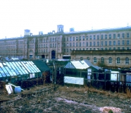 Saltaire allotments